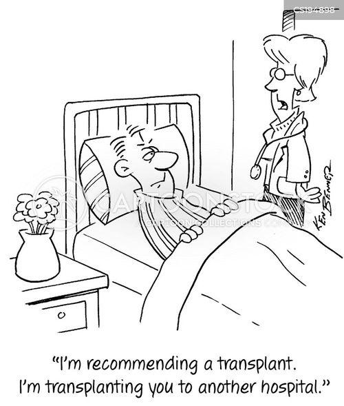 organ transplants cartoon