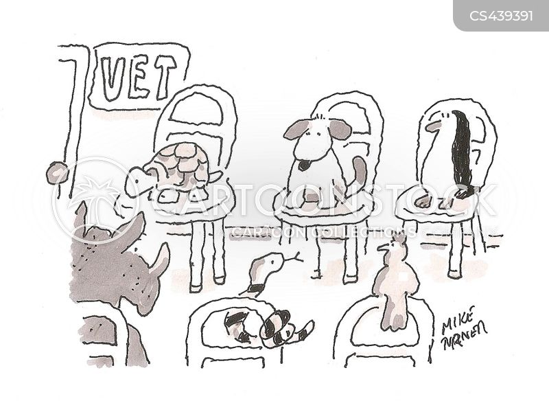 animal care cartoon