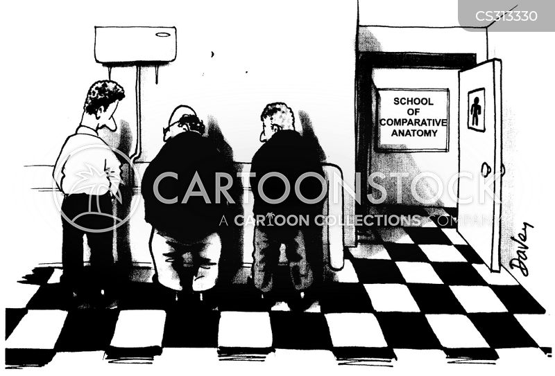anatomies cartoon