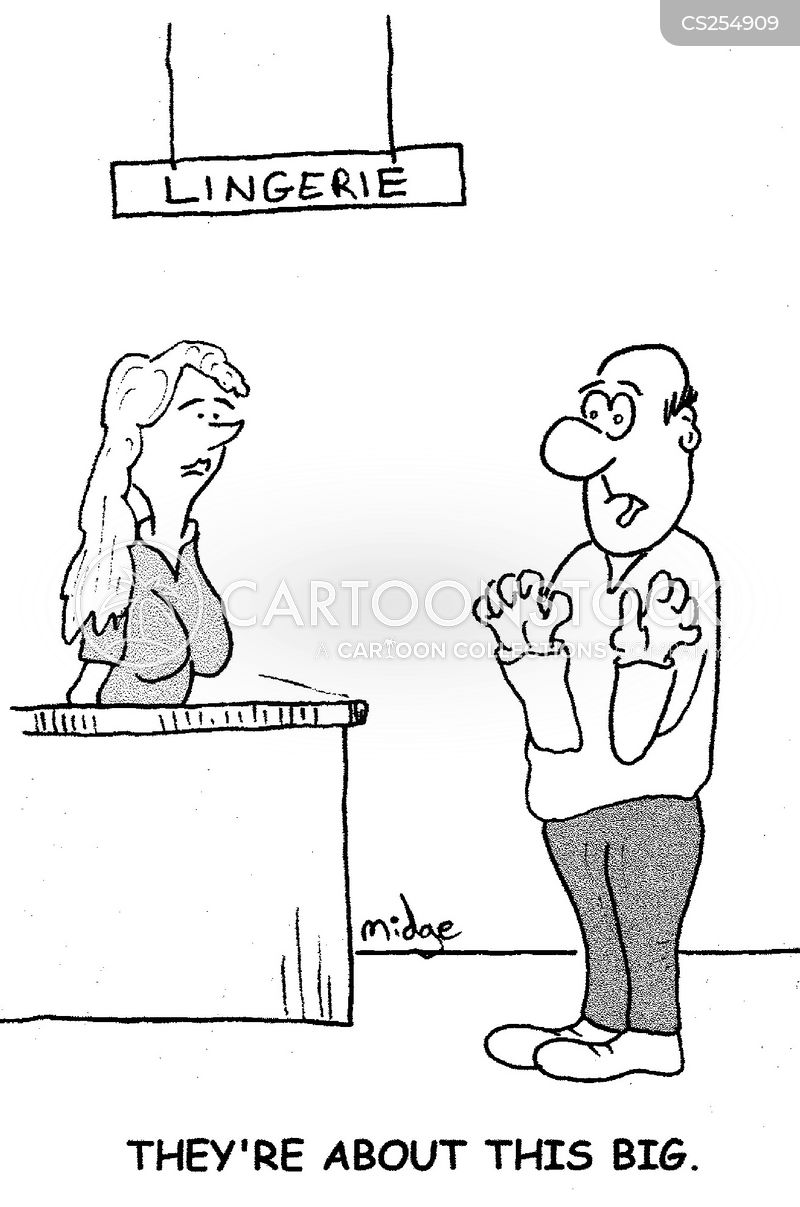 bra sizes cartoon