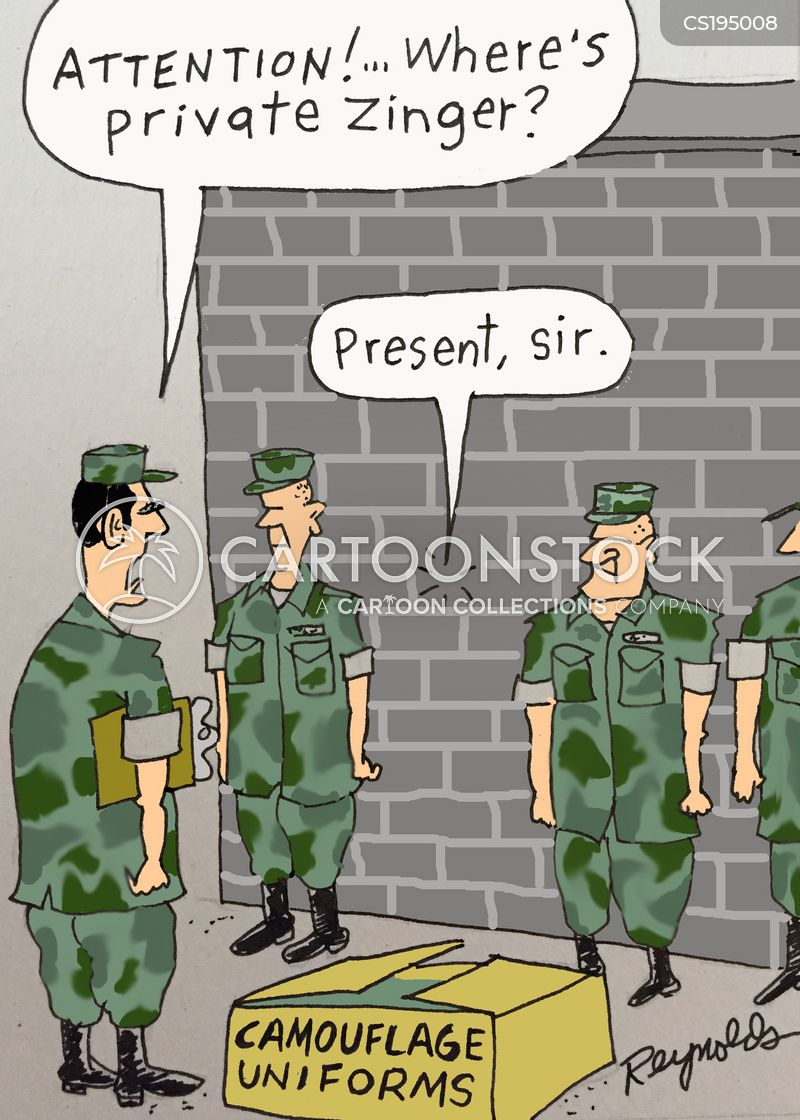 camouflages cartoon