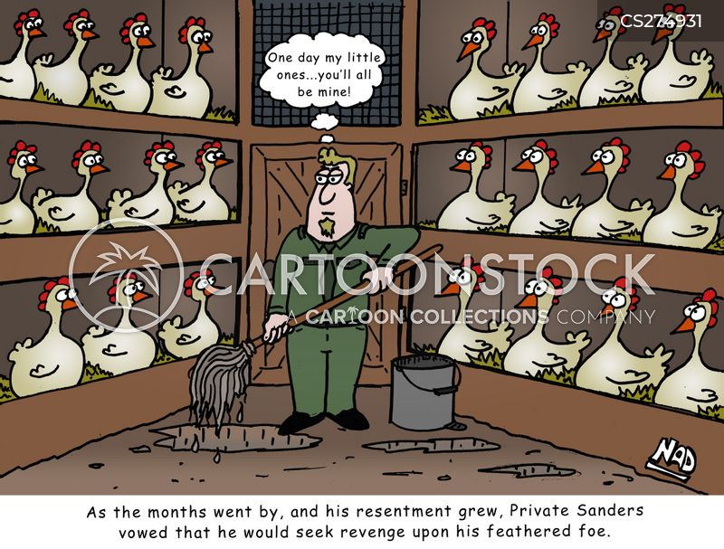 Funny Chicken Cartoons: Chicken Coops Cartoons And Comics