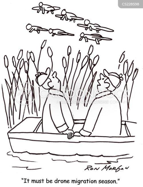 air forces cartoon