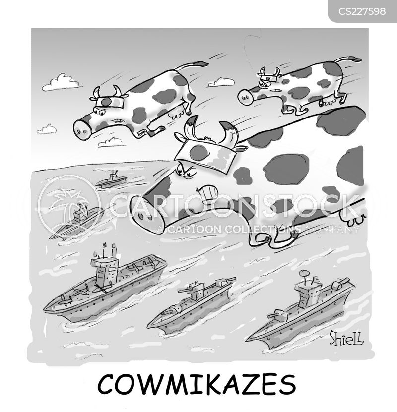 kamikazes cartoon