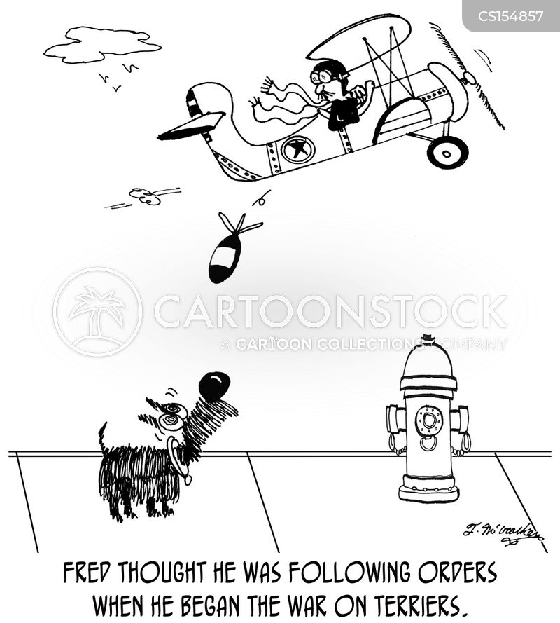 following orders cartoon