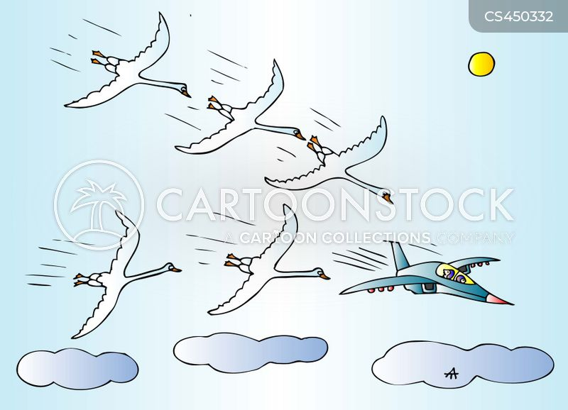 fighter jet cartoon