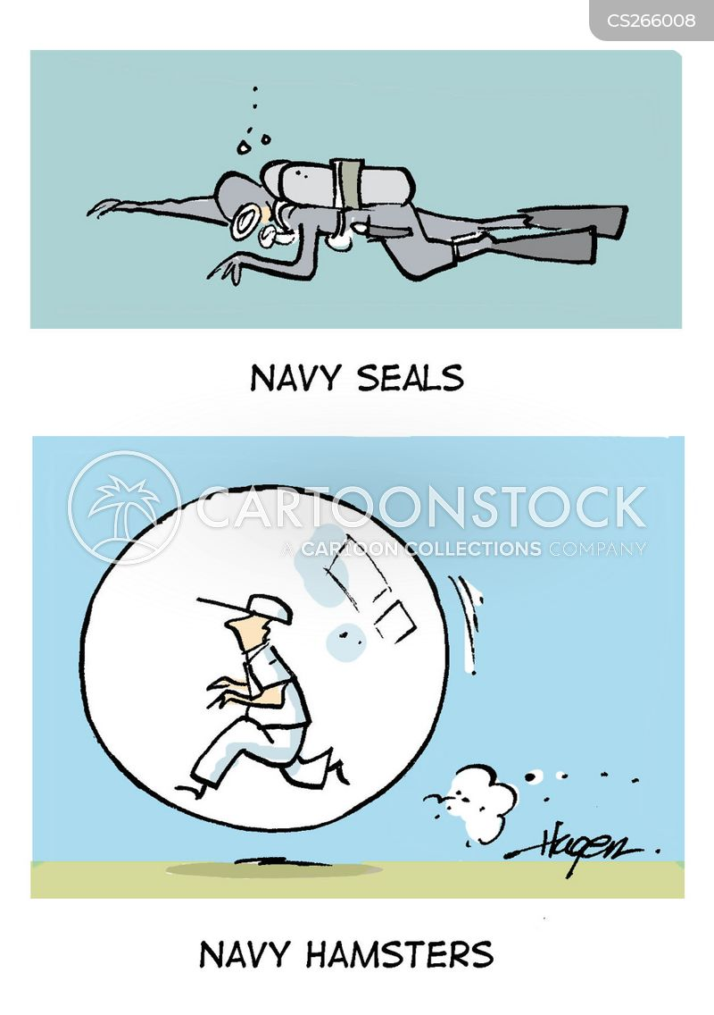 navy seals cartoon