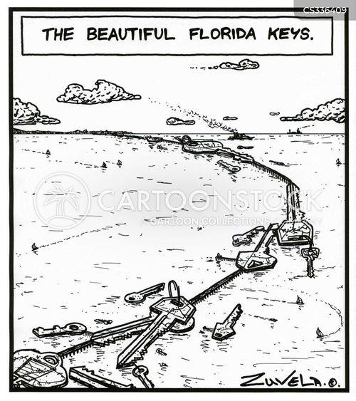 florida keys cartoon