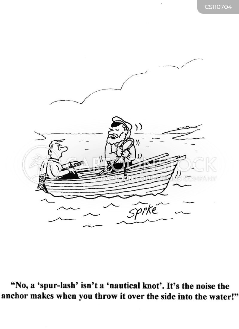 sea dog cartoon