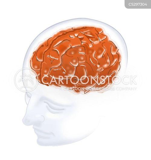 brainy cartoon