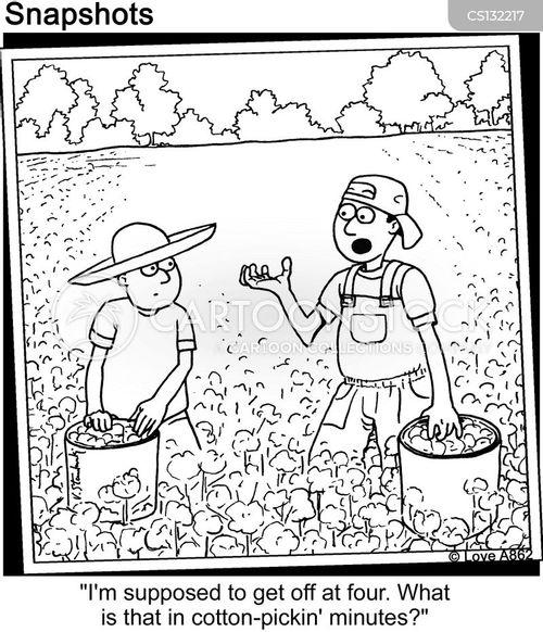 cotton cartoon