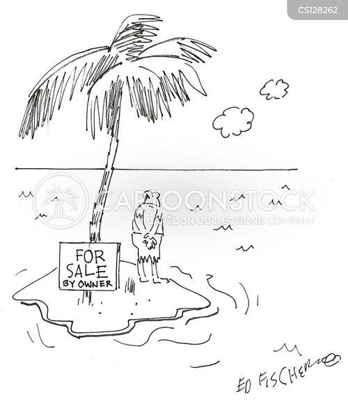 property sale cartoon