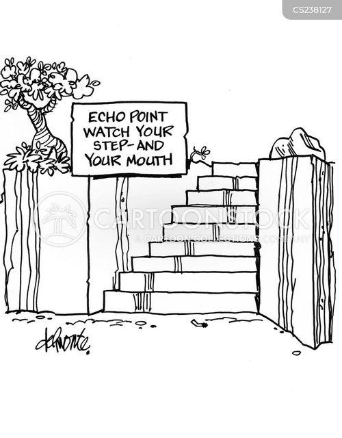 echo point cartoon