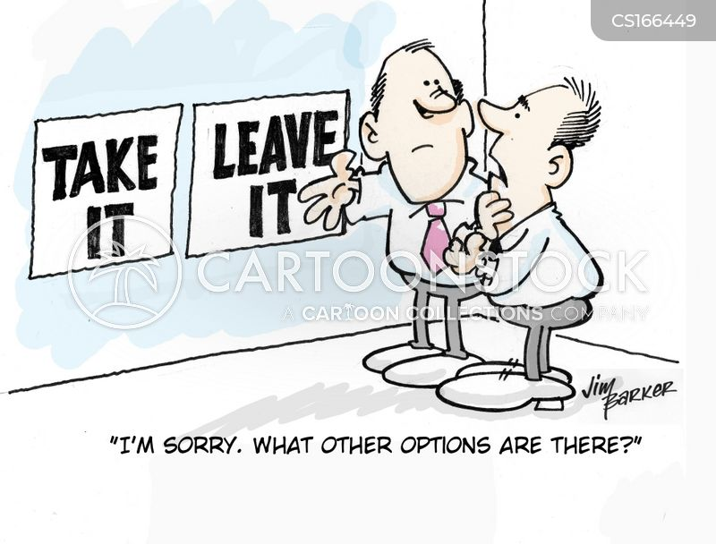 decision maker cartoon