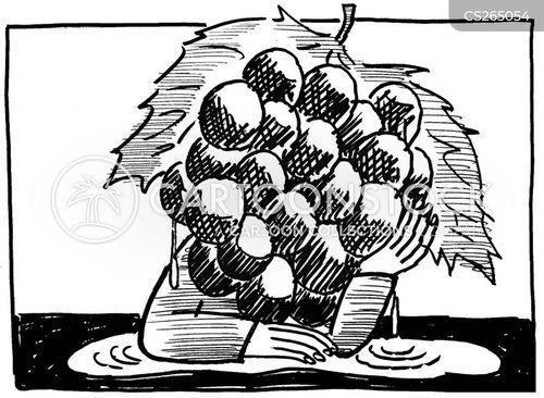 sourgrapes cartoon