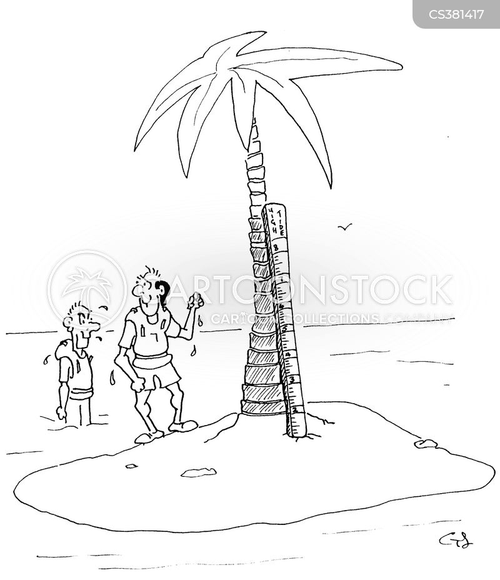 high tides cartoon