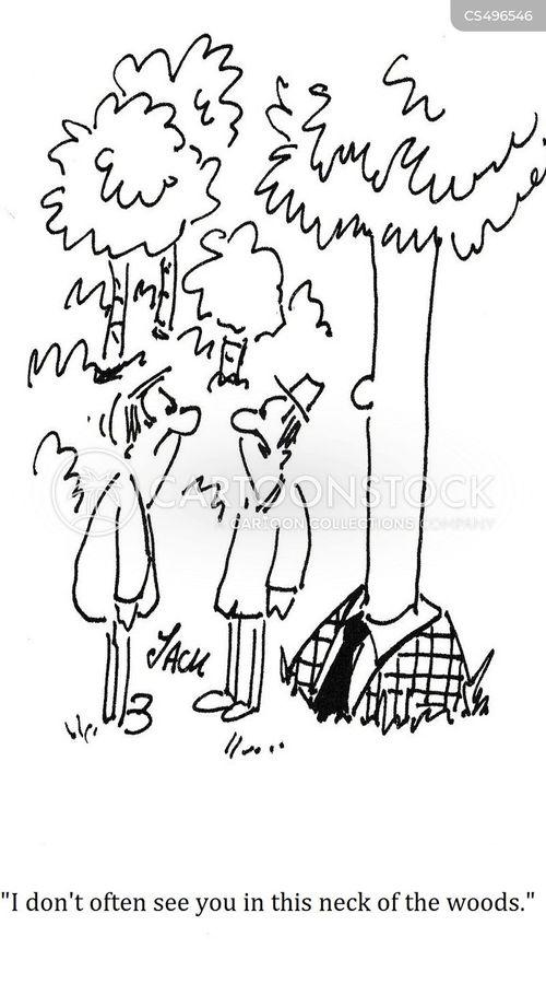 outdoorsy cartoon