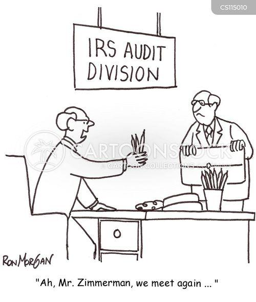 irs audits cartoon