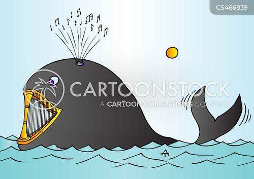 whale music cartoon