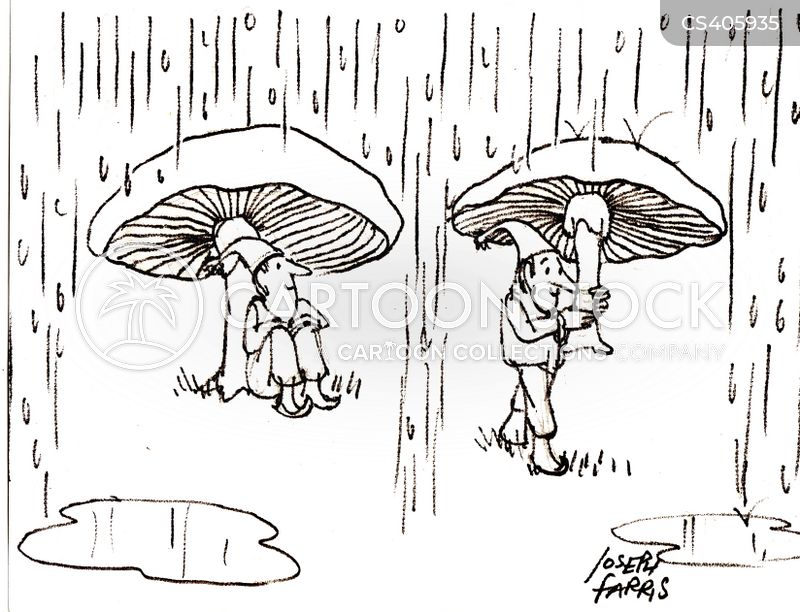 rain storms cartoon