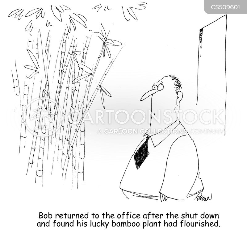 Bamboo cartoons, Bamboo cartoon, funny, Bamboo picture, Bamboo pictures, Bamboo image, Bamboo images, Bamboo illustration, Bamboo illustrations