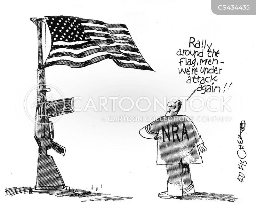 politics and gun control essay