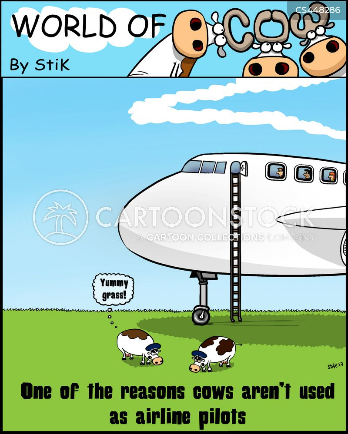 chewing the cud cartoon