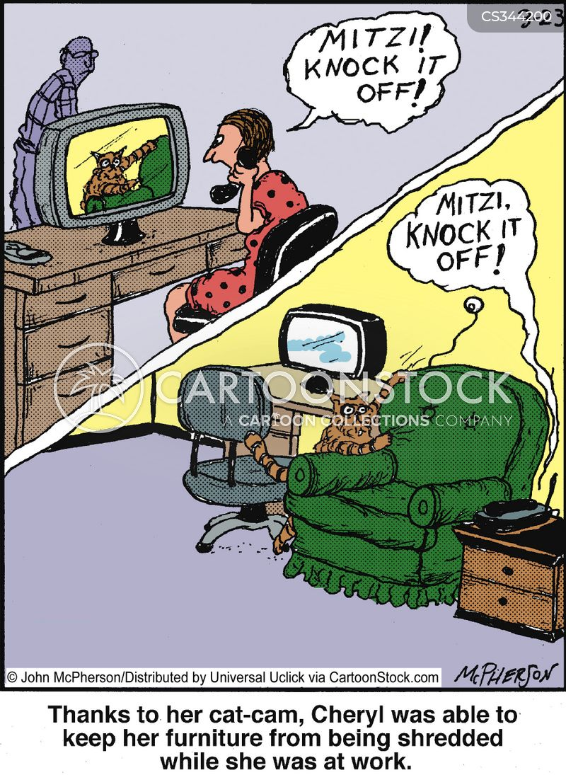 webcam cartoon