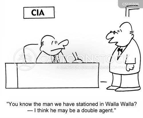 walla cartoon