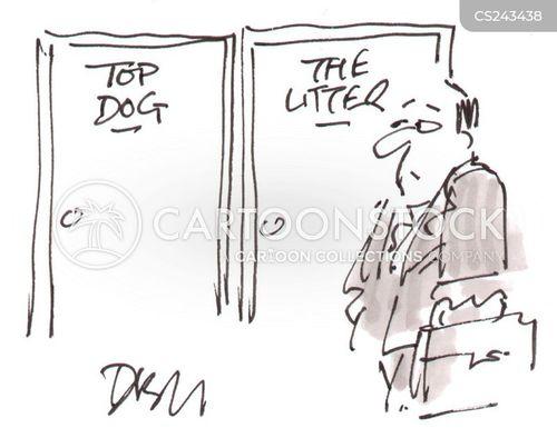 company structures cartoon