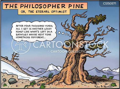 pine cartoon
