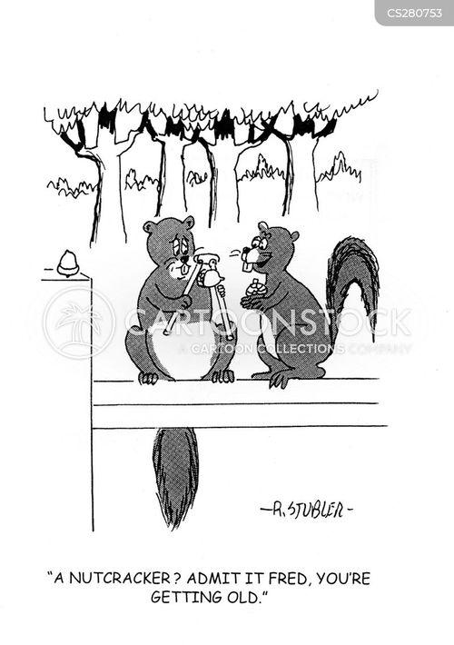 nutcrackers cartoon