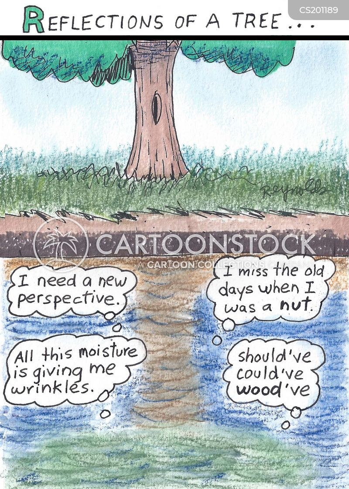 reflective cartoon