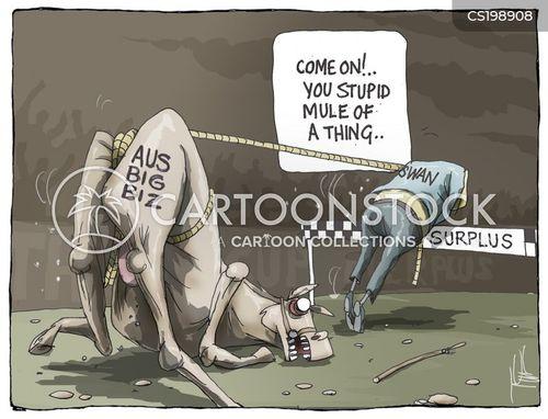 australian politics cartoon