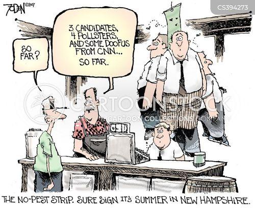new hampshire cartoon