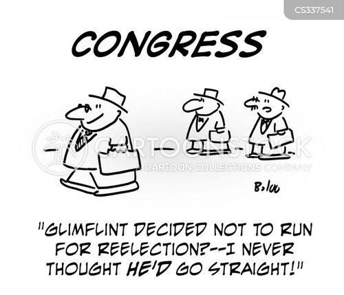 reelection cartoon