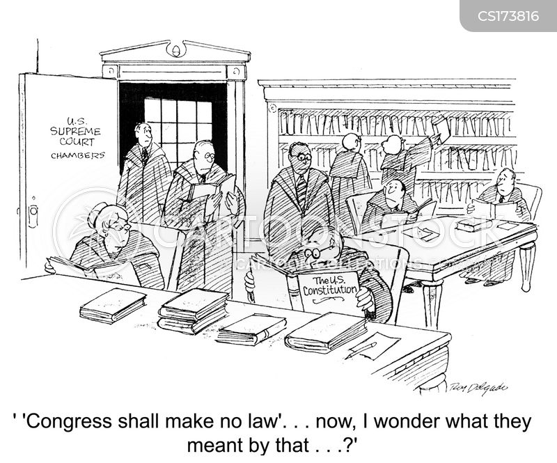 constitution cartoon