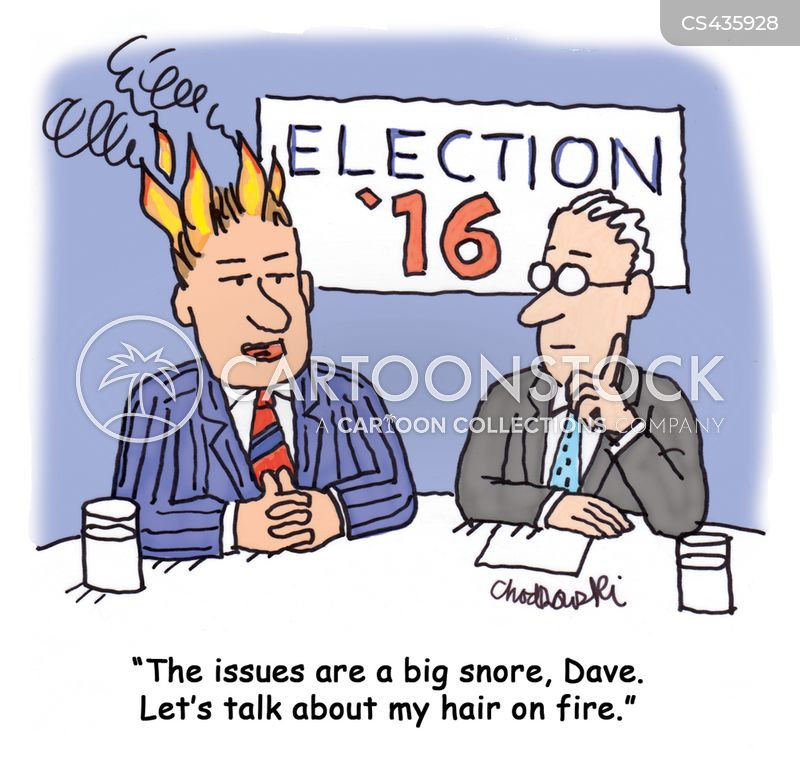 election issues cartoon