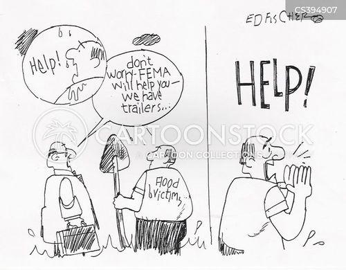 fema cartoon