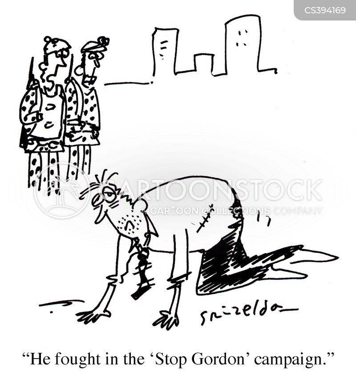 fighers cartoon
