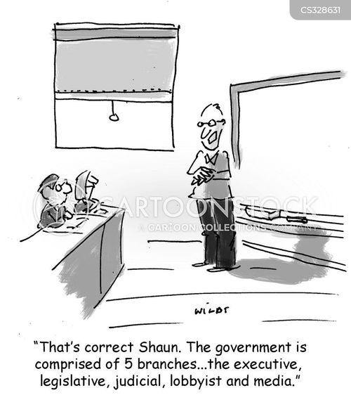judicial branch cartoon