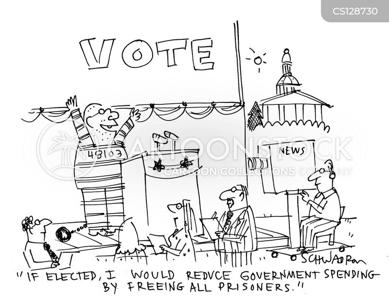 elected officials cartoon