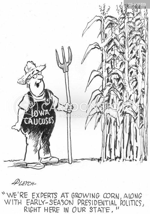 iowa caucuses cartoon