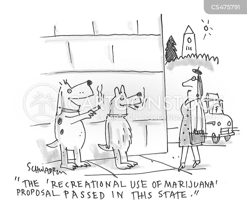 recreational marijuana cartoon