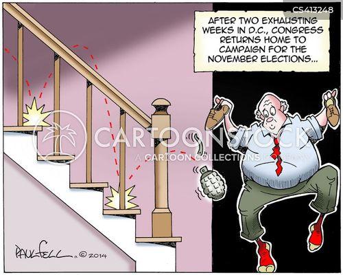 house of representative cartoon