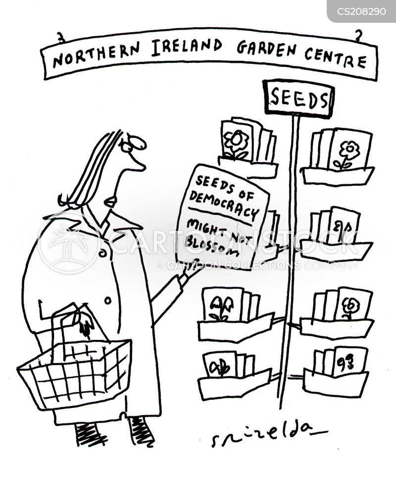 northern ireland cartoon