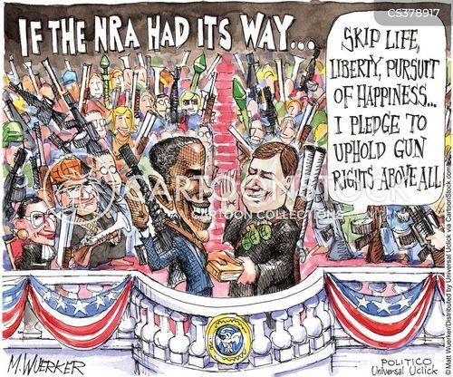 constitutional right cartoon