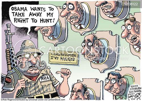 american constitution cartoon