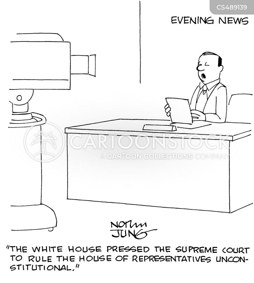 executive branch cartoon