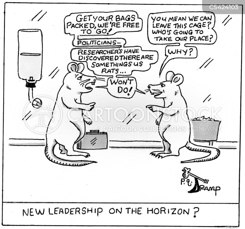 laboratory rat cartoon